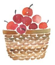 herbstfreuden-apfelkuchen