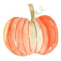 herbstfreuden-kuerbisse-verzieren-pumpkin-carving