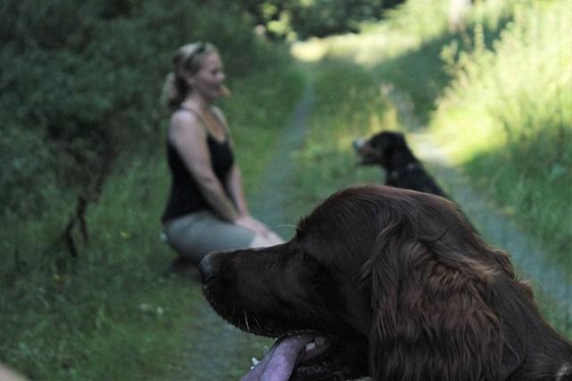 Krimitour mit Hund Trendevent Krimispiel