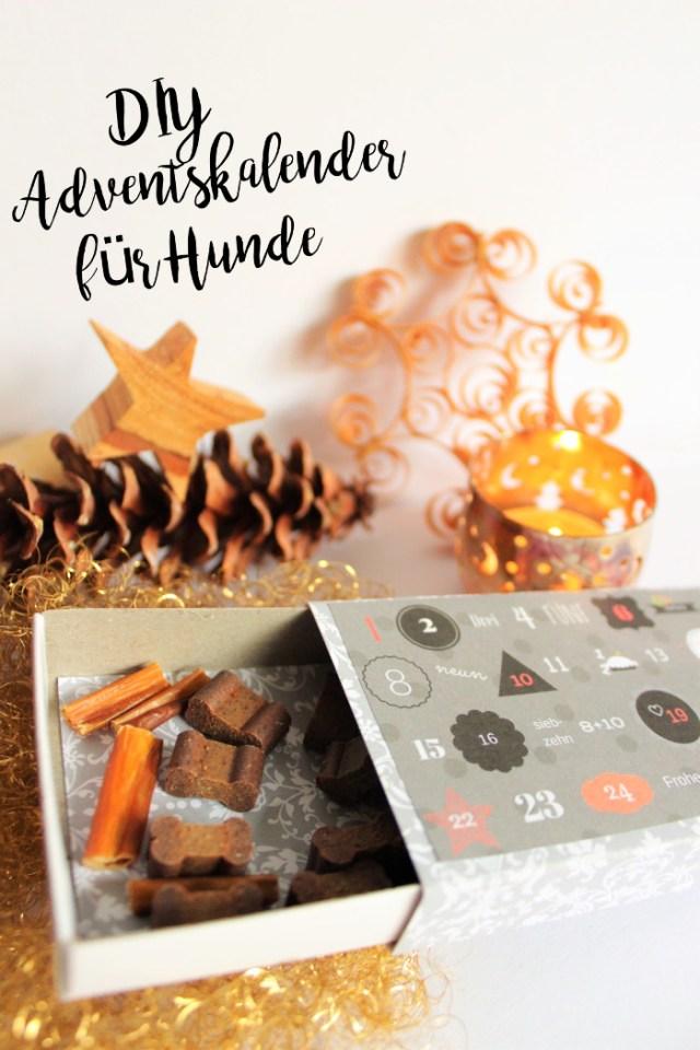 DIY-Adventskalender-fuer-hunde-weihnachten-selbermachen-geschenk-hund