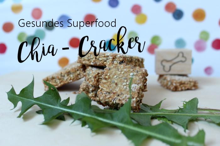 Hundekekse Ohne Ei Chiacracker Selbermachen Rezepte Mit Superfood