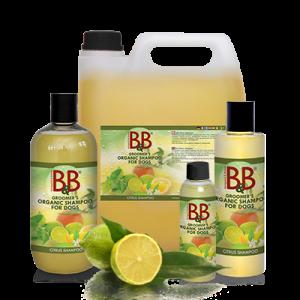 B&B Økologisk Citrus Shampoo