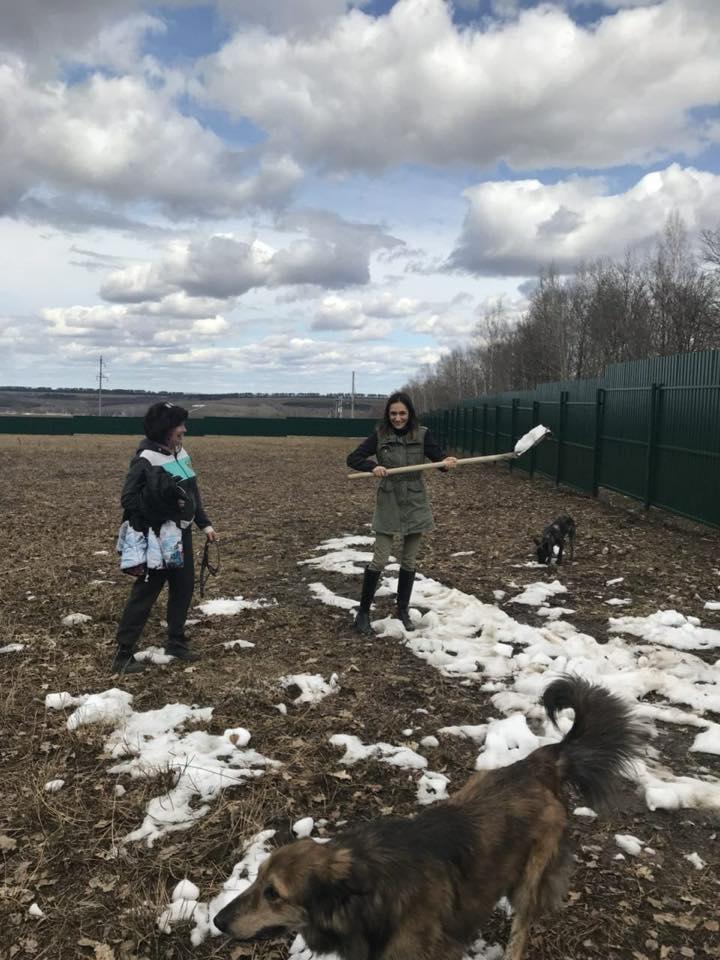 Unser Tierheim-Bau in Kazan geht weiter