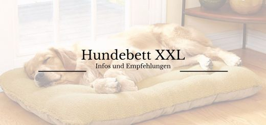 Hundebett XXL