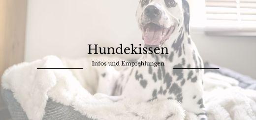Hundekissen