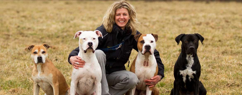 Leben Mit Listenhunden Schweizer Hunde Magazin