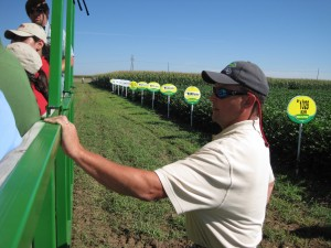 An agronomist gives a field tour of various cotton varieties