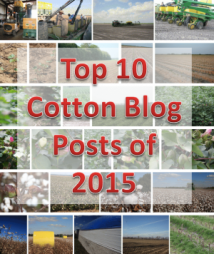 top 10 cotton blog posts