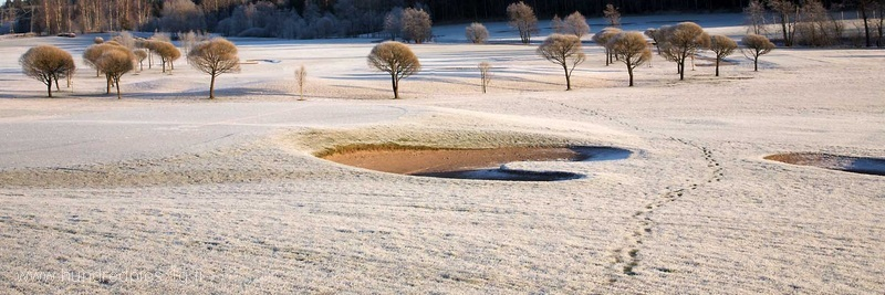 090103-espoo-golf-crop-net-img_77171