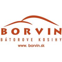 Borvin logo