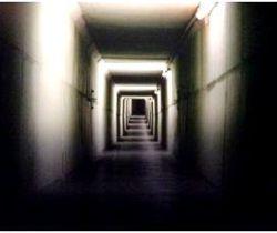 Bunker Relikte DHM