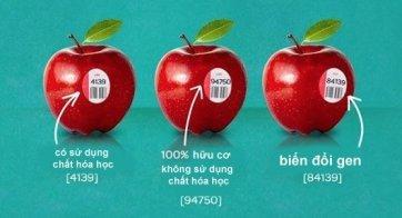 """Nếu trên miếng dán có 5 chữ số và được bắt đầu là số """"8"""" có nghĩa rằng đây là sản phẩm GMO (Genetically Modified Organism) tức là biến đổi gen. Ví dụ như với một sản phẩm là chuối biến đổi gen sẽ có mã số là 84011, trong khi đó loại chuối thông thường sẽ có mã số 4011. Hay như một sản phẩm táo thông thường sẽ có mã là 4139, thì loại táo biến đổi gen trên miếng dán sẽ có mã số là 84139."""