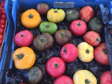 Những giống cà chua khác nhau được một hộ dân tại San Antoni, TX, USA trồng trong trang trại không có bất cứ hoá chất hay bảo quản. Toàn bộ đều được trồng trong điều kiện thủ công.