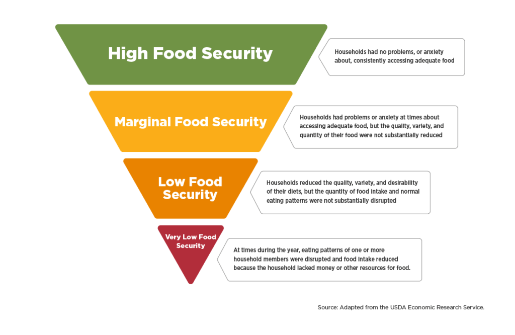 food insecurity pyramid infographic