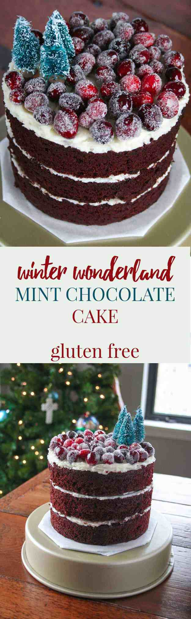 Swap out your cookies for cake - GLUTEN FREE Winter Wonderland Mint Chocolate Cake! Happy Holidays! | hungrybynature.com