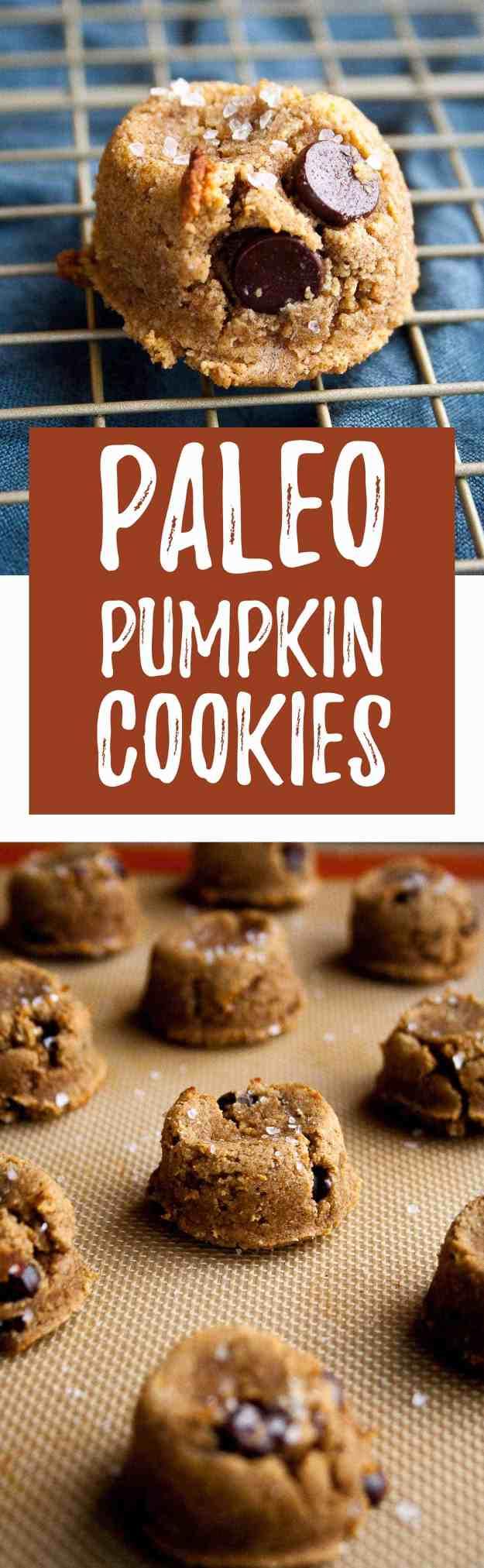 Paleo Pumpkin Cookies with Dark Chocolate Chips   pumpkin recipes, coconut flour, almond flour, maple syrup, gluten free, diary free, grain free, easy, pumpkin spice, fall, baking   hungrybynature.com