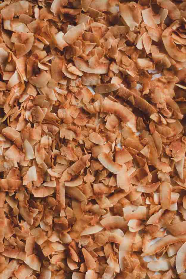 close up shot of toasted coconut flakes