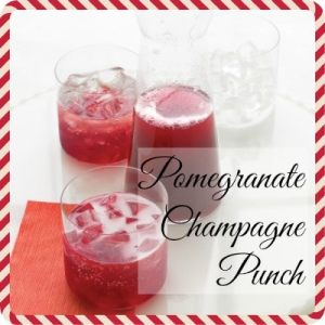 Very Merry Holiday Cocktails: Fruity Cocktails!   HungryEnoughToEatSix.com