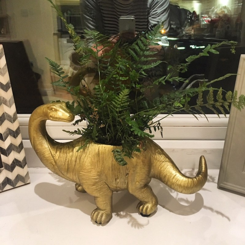 Dinosaur house plant pot