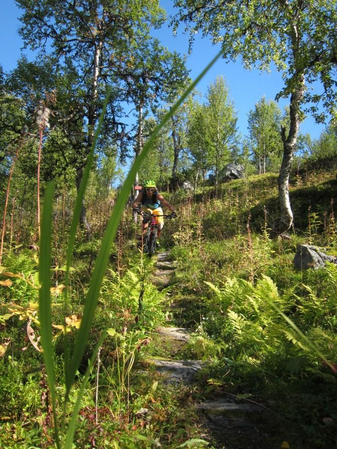 Martin heading down Geartuvartu