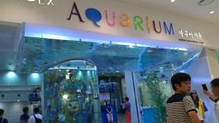 Aquarium in zeh Coex Mall