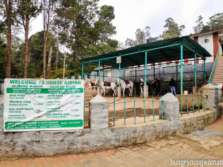 Ooty Boat House - Best Places to Visit in ooty for 3 days