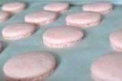 Strawberry Macaron Shells