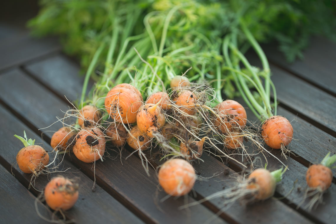 Rondo Carrots
