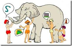 Los lados del elefante.