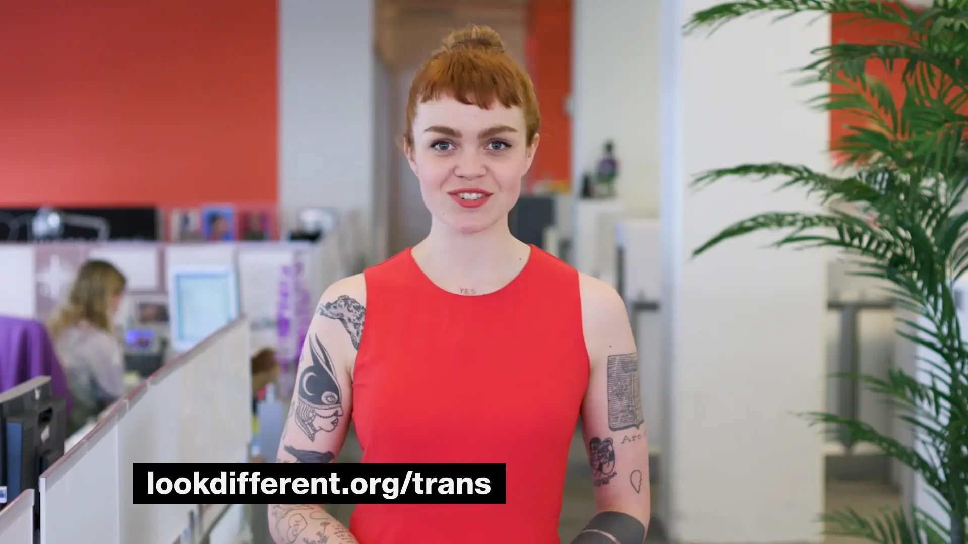 MTV News Meredith Graves Trans