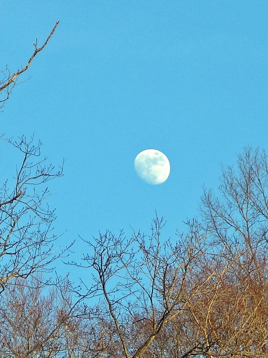 Moon1.2
