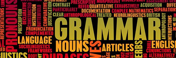 Hunter Programs Education Services has grammar tutors