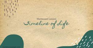 HuntersWoodsPH Montessori History Lesson Timeline of Life