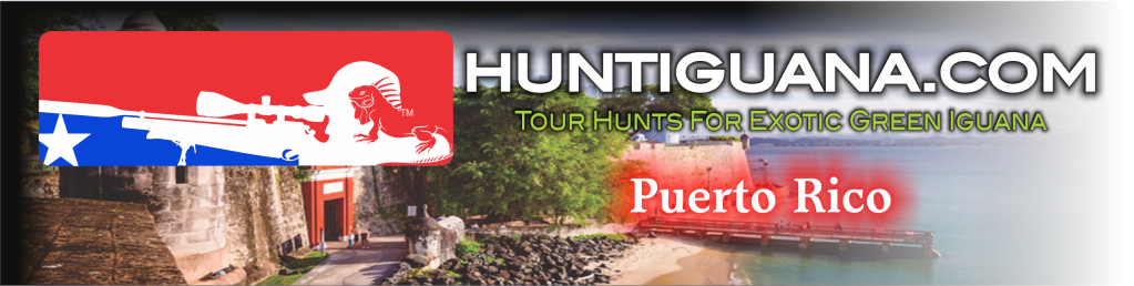 Your leading Iguana hunting guide service in Puerto Rico.