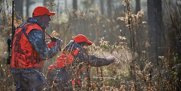 Deer hunting avoiding detection