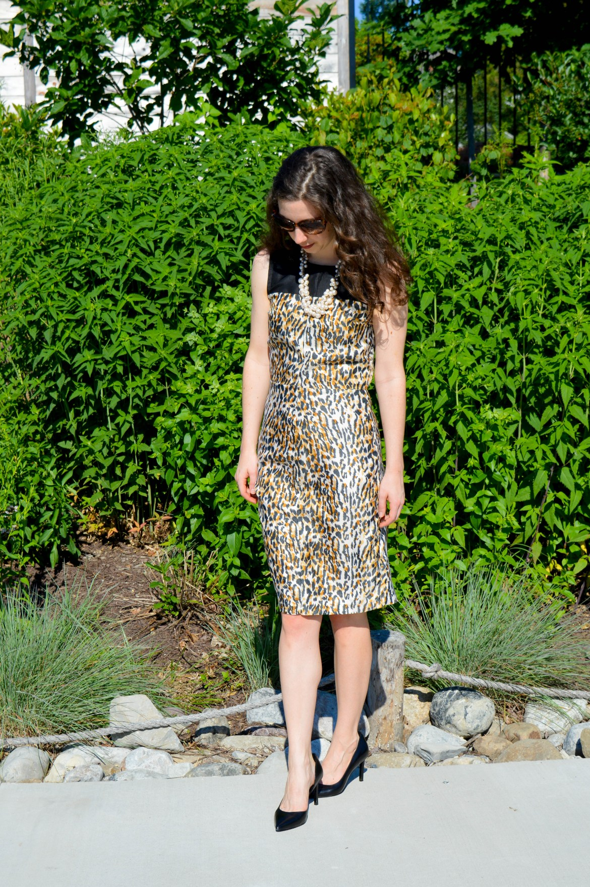The Leopard Print Dress | Summer work outfit