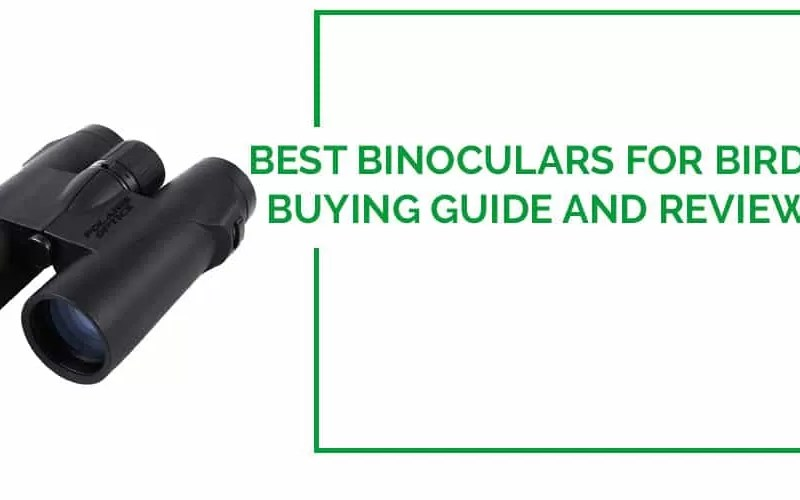 Best Binoculars for Birding reviews 2016
