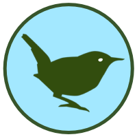 Read more about the article Quizzing the Wren