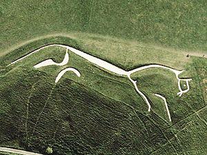 Horse whisperers