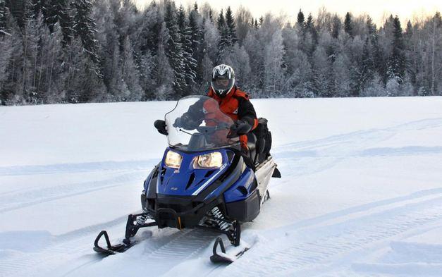 Сноуборд арктикалық мысық Bearcat 570