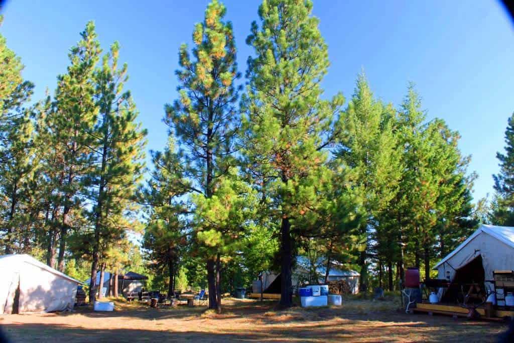 Elk Camp 5 2013