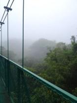 Selvatura Hanging Bridges Tour