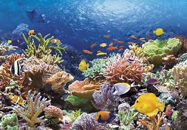 Attractions Hurghada
