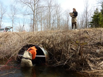 Our staff and Huron Pines AmeriCorps members collect data at every crossing in a river system