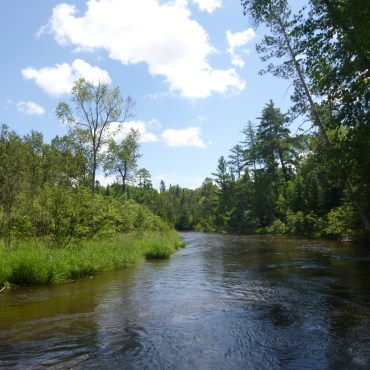 North Branch Au Sable on Rucker property looking downstream