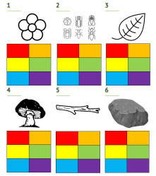 Colors in the wild scavenger hunt worksheet with pictures