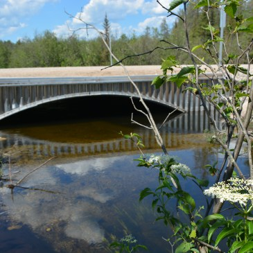 Shingle Mill Arch Culvert