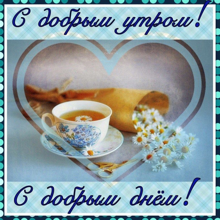 картинки с пожеланием доброго утра хорошего дня и отличного настроения будет держаться