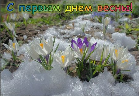 Картинки поздравления с первым днем весны - красивые открытки с надписями к 1 марта 2021