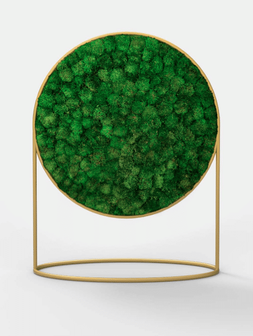 G-LINE launches Green Mood, a new concept of acoustic panels whose absorbent material are plants, designed by Alain Gilles.